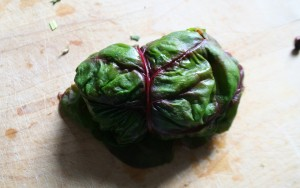 Chard leaf - stuffed and rolled