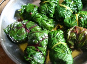 Stuffed chard leaves ready to cook