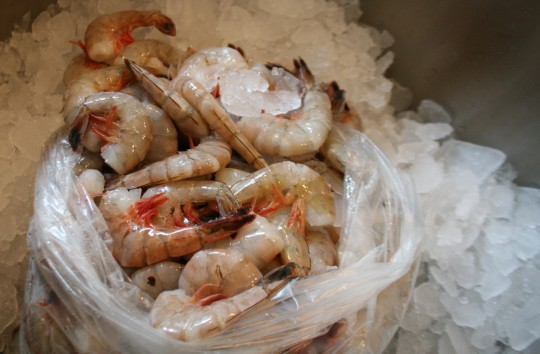 Fresh Gulf shrimp, ready to boil