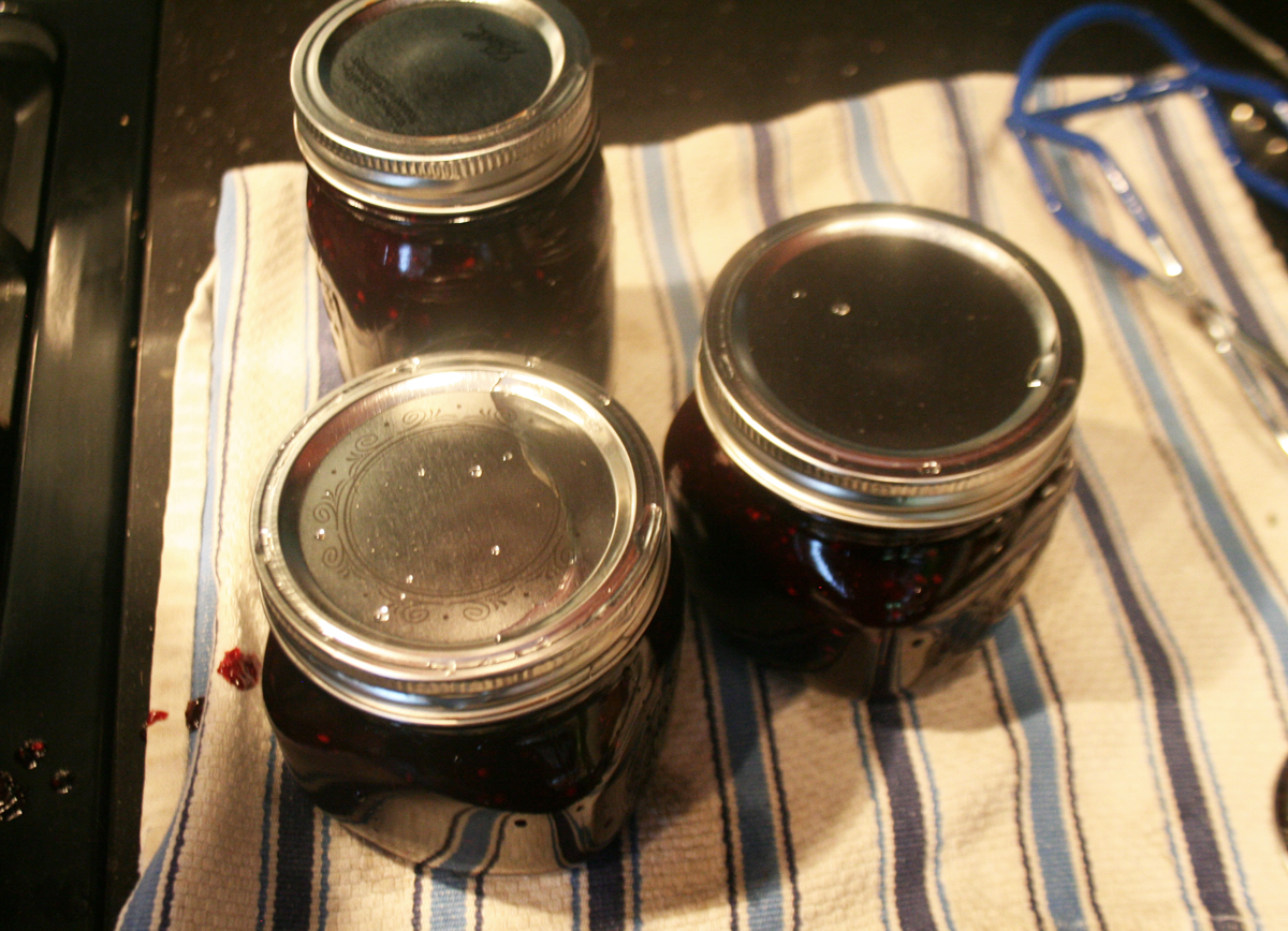 CannedJamCooling Low Sugar Blackberry Jam
