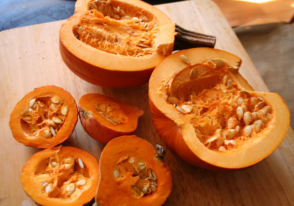 Cut Pumpkin and Golden Nugget Squash