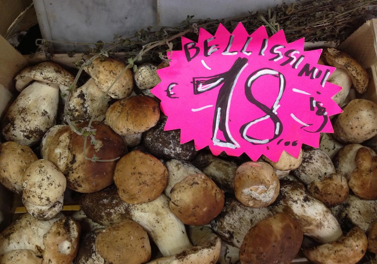 FreshPortabelloMushrooms Porcini Mushroom Barley Soup