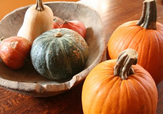 Winter Squashes - butternut, kabucha, pumpkin & golden nugget