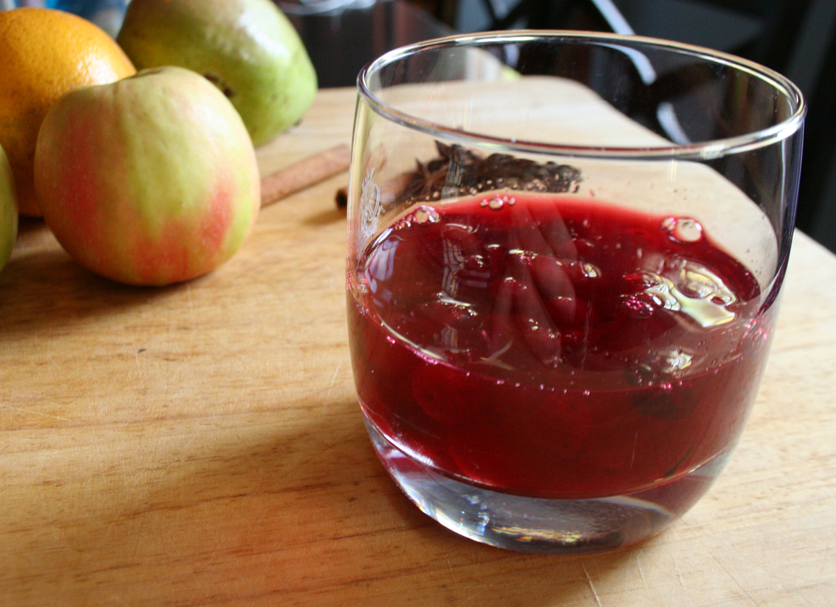CranberryShrubGlass Fall Spice Apple Brandy Punch